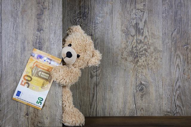 medvídek s bankovkou