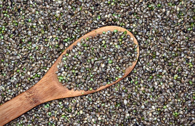 lžíce semínek